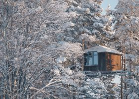 romantic_nest_snow