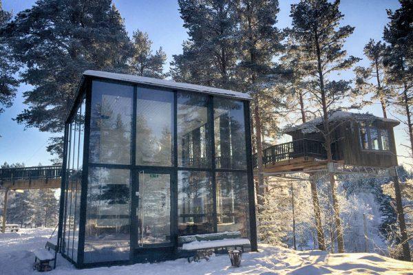 Glashus & Fågelnäste vinter