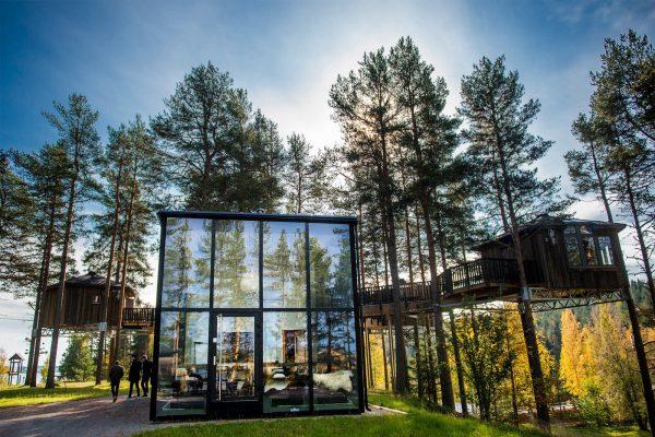 Fågelnäste & glashuset