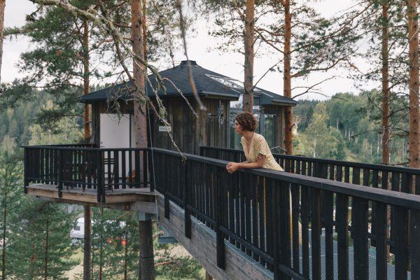Trädhus i Norrland